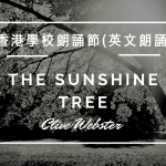 The Sunshine Tree